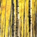 2002_aspen_trees_62x32_oil_on_canvas_2002